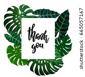 thank you calligraphy lettering ... | Shutterstock .eps vector #665057167