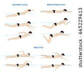 swimming breaststroke ... | Shutterstock .eps vector #665229613