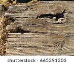 old  weather worn wood board...   Shutterstock . vector #665291203