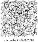 tulips line art drawing.... | Shutterstock .eps vector #665309587