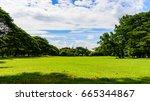 enjoy in the garden at... | Shutterstock . vector #665344867