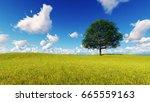 landscape tree field grass 3d... | Shutterstock . vector #665559163