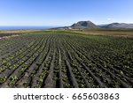 Agriculture And Farming In The...