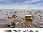 Nationalpark Wattenmeer ...