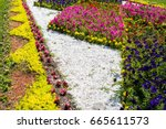 Flower Bed With Flowers