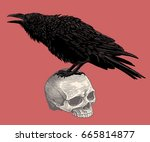 the crow sits on the skull.... | Shutterstock .eps vector #665814877