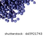 close up view of fresh... | Shutterstock . vector #665921743
