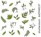 green floral decorative branch... | Shutterstock .eps vector #665948137