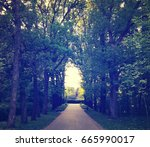 alley of the park in the evening | Shutterstock . vector #665990017
