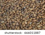 Small photo of Shelled almond seeds pattern