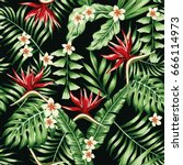 tropical plants leaves and... | Shutterstock .eps vector #666114973