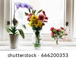 flower arrangements on white... | Shutterstock . vector #666200353