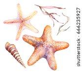 Watercolor Orange Starfishes ...