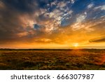 summer field full of grass and... | Shutterstock . vector #666307987