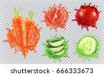 aloe juice  carrots  grapefruit ... | Shutterstock .eps vector #666333673