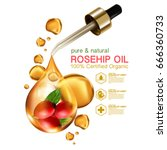 rose hip oil natural cosmetic... | Shutterstock .eps vector #666360733