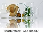 cosmetic bottle containers with ... | Shutterstock . vector #666406537