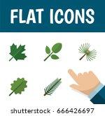 flat icon nature set of alder ... | Shutterstock .eps vector #666426697