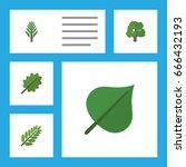 flat icon natural set of alder  ... | Shutterstock .eps vector #666432193