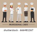 professional chef set  vector... | Shutterstock .eps vector #666481267