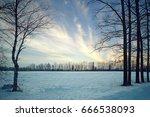 Winter Field Trees Sky...