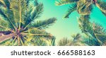 blue sky and palm trees view... | Shutterstock . vector #666588163