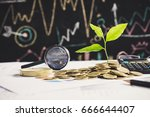 tree growing on stack of coins... | Shutterstock . vector #666644407
