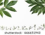 white background with green... | Shutterstock . vector #666651943