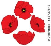 vector poppy buds. poppies... | Shutterstock .eps vector #666727543