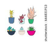 set of house plant isolated....   Shutterstock .eps vector #666831913