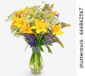 bouquet od wild flowers ... | Shutterstock . vector #666862567