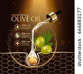 olive oil organics natural skin ... | Shutterstock .eps vector #666883177