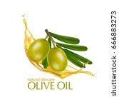 olive oil organics natural skin ... | Shutterstock .eps vector #666883273