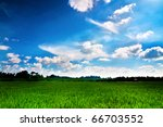 Green paddy fields and sky - stock photo