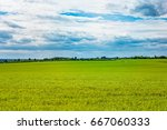wide field  forest on horizon... | Shutterstock . vector #667060333