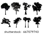 set of silhouettes of trees on... | Shutterstock . vector #667079743