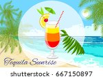 tequila sunrise cocktail vector ...