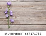 Blue Bell Flowers On Wooden...