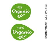 organic food labels and... | Shutterstock .eps vector #667193413