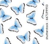 blue and black butterflies  ... | Shutterstock . vector #667199953
