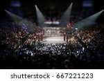 empty boxing ring surrounded... | Shutterstock . vector #667221223