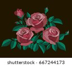 red and pink roses bush with... | Shutterstock .eps vector #667244173
