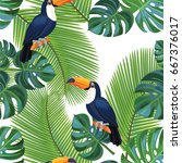 tropical pattern with toucan... | Shutterstock .eps vector #667376017