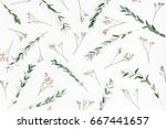 flowers composition. pattern... | Shutterstock . vector #667441657