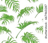 hand drawn branches and leaves... | Shutterstock .eps vector #667463287