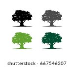 oak tree and leaf logo template | Shutterstock .eps vector #667546207