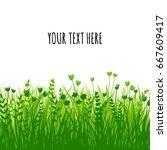 summer green grass background... | Shutterstock .eps vector #667609417