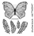 butterfly and feathers.... | Shutterstock .eps vector #667760047