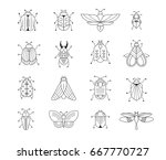bugs  insects  butterfly ... | Shutterstock .eps vector #667770727