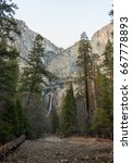Yosemite Falls And Woods ...